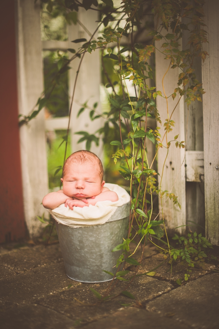 BabyForrest_KiKiCreates 014