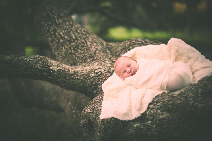 BabyForrest_KiKiCreates 048