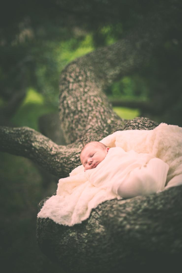 BabyForrest_KiKiCreates 051