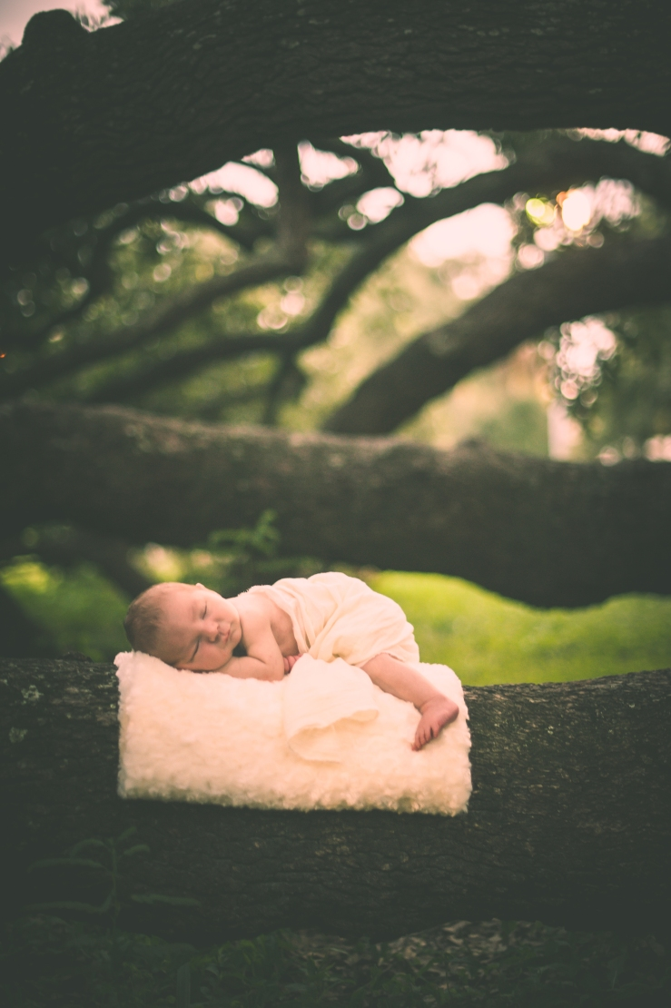 BabyForrest_KiKiCreates 057